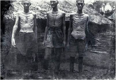pows-considered-fit-for-work-by-their-japanese-captors.jpg